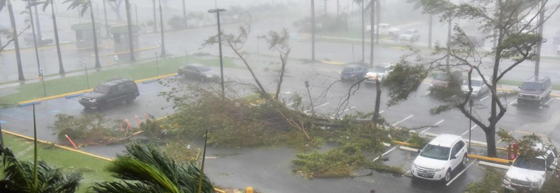 Puerto Rico: destroyed