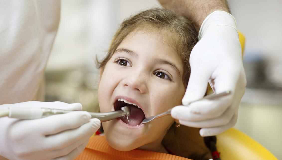During this week, dozens of girls, boys and teenagers from the counties of Philadelphia, Montgomery and Delaware will have free access to dental services.