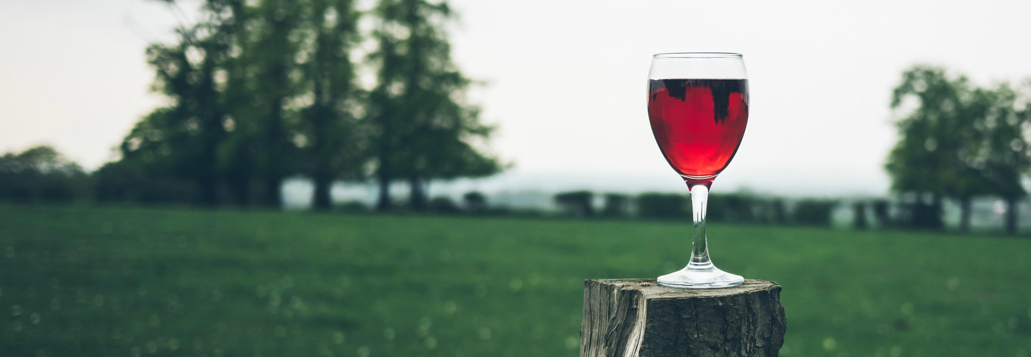 ¿Cuánto alcohol es mucho alcohol?