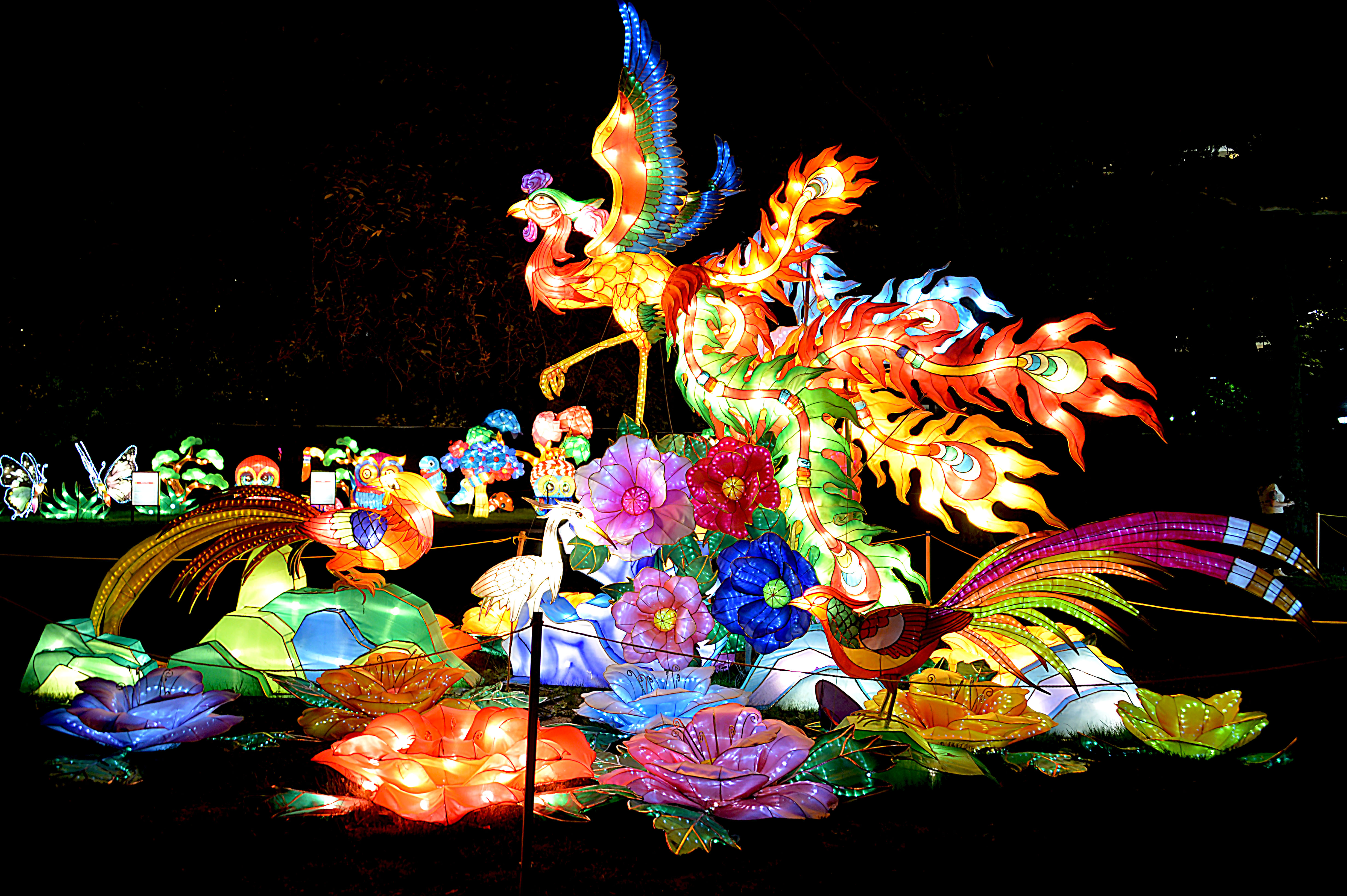 quot a celebration of lightsquot the chinese lantern festival