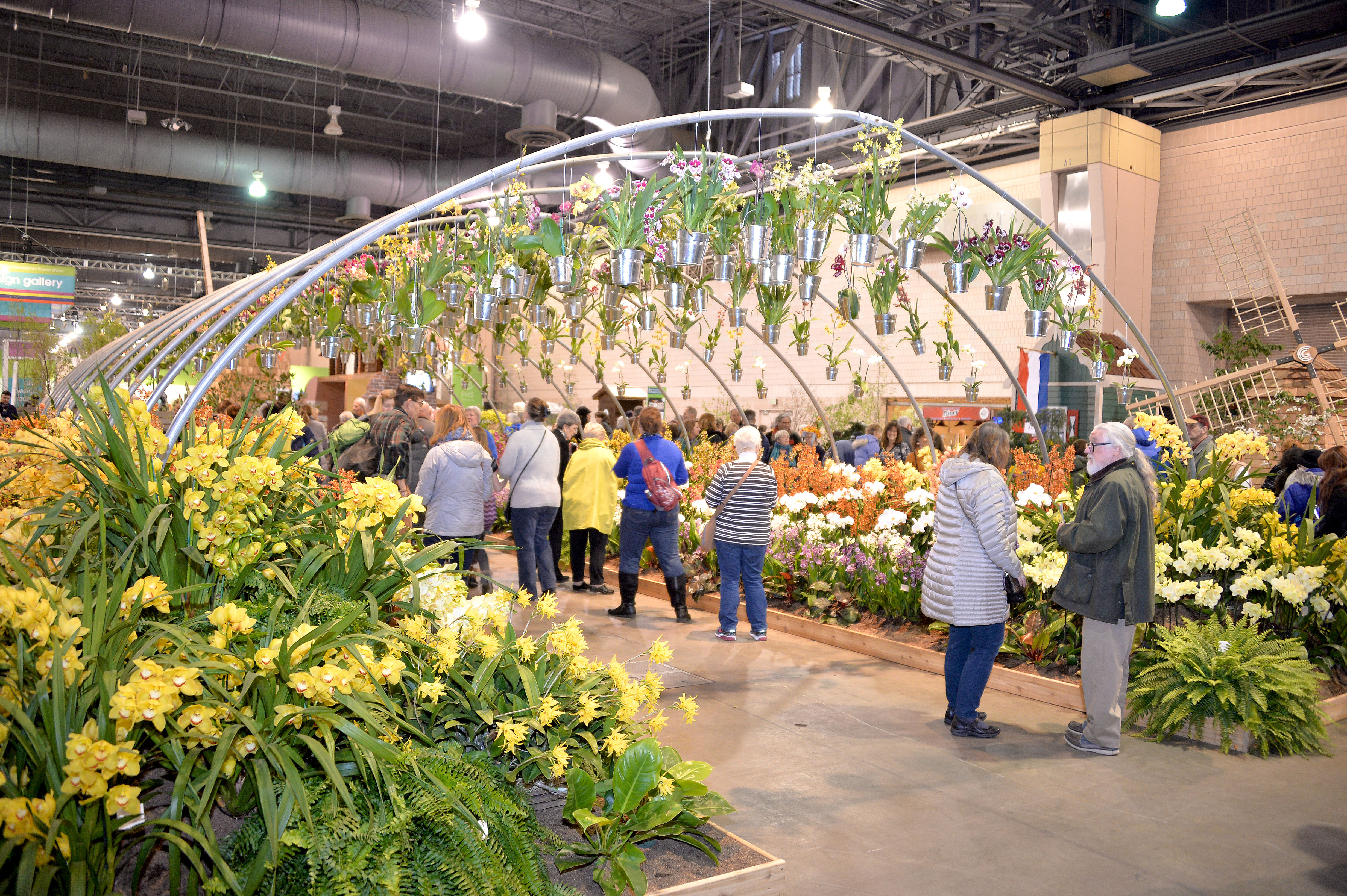 A trip to Holland at the Philadelphia Flower Show