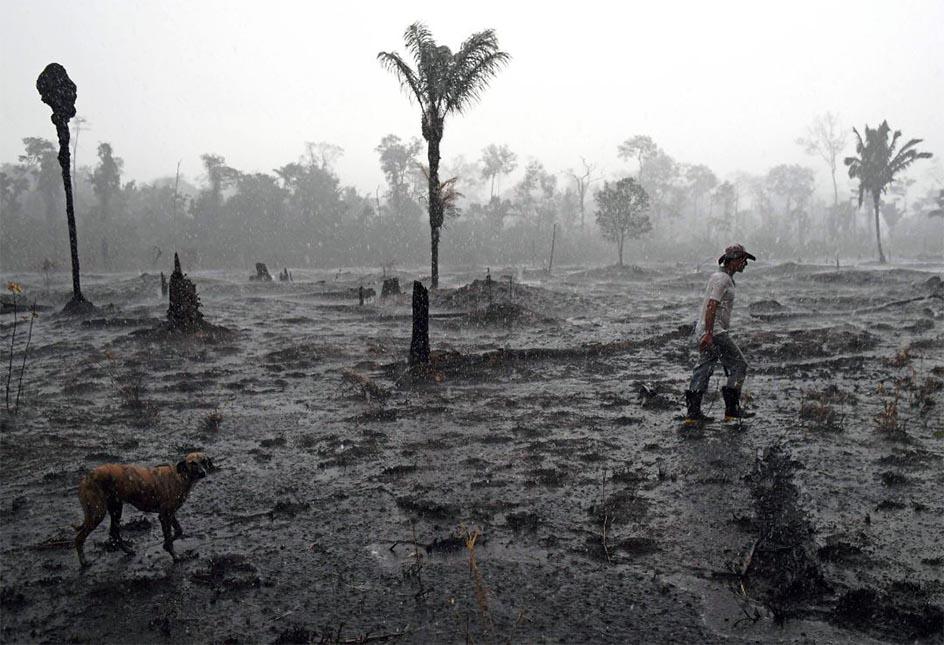 La selva vivió en septiembre uno de los peores incendios que se conocen, con casi 22.000 fotos. Foto: Carl de Souza/AFP via Getty Images