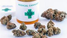 In countries such as Colombia, the medical marijuana business contrasts with the fight against drug trafficking, which involves peasants in remote areas who have no other option for survival.  Depositphotos