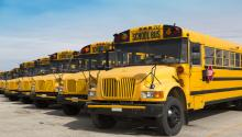 This new initiative will be the first in the state. Photo:schoolbusandlimoinsurance.com/