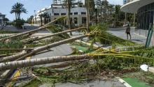 View of fallen trees blocking a street after the passing of Hurricane Irma in Miami Beach, Florida, USA, Sept. 11, 2017. EPA-EFE/Giorgio Viera