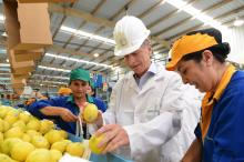Photo provided by the Argentine president's office showing president Mauricio Macri (C) during a visit to a lemon packing plant in Tucuman, Argentina, April 18, 2018. EPA-EFE/Presidencia Argentina