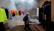 Latinoamérica combate desde hace semanas a los mosquitos quetransmiten el Zika(EFE).