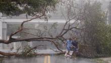 Miami amaneció inundaday con cientos de árboles sobre sus avenidas. Aquí un par de residentes caminando porBrickell Avenue, en pleno corazón de la ciudad del sol. EFE