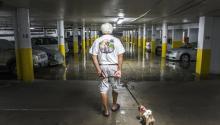 Reinaldo Jiménez observa junto a su perro el interior del parking de su edificio durante el paso del huracán Irma hoy, lunes 11 de septiembre de 2017, en Collins Ave, en Miami Beach, Florida (EE.UU.). Irma se degradó hoy a tormenta tropical junto a la costa oeste de Florida, en su avance rumbo al norte, informó el Centro Nacional de Huracanes (CNH) de EE.UU. EFE/Giorgio Viera