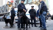 Un ataque terrorista en la principal estación de autobuses de Nueva York dejó el lunes cuatro heridos, entre ellos el presunto autor delatentado, Akayed Ullah, un joven de 27 años y de origen bangladeshí que fue detenido tras la explosión. EFE/Justin Lane