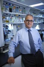 El Dr. Kamel Khalili (Foto: Universidad de Temple).