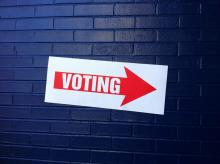 Voting photo. Courtesy Creative Commons.