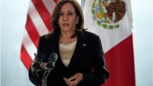 Vice President Kamala Harris at her meeting with Mexican President AMLO in early June 2020. Photo: Getty Images
