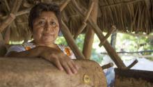 La apicultora maya Leydy Pech lleva diez añosenfrentándose al azote medioambiental del gigante de la soja. Photo: AIDA