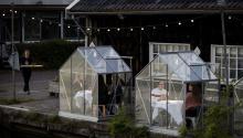 ¿Son orquídeas o personas? La ingeniosa alternativa del Mediamatic ETEN, en Ámsterdam, para reabrirsus puertas el próximo 19 de mayo. Photo:Mediamatic ETEN