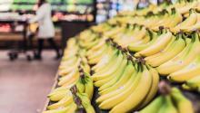 Los plátanos puedenayudarte a combatir la acidez. Foto:Gratisography