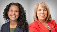 Xochitl Torres Small is the Democratic candidate for the second congressional district in New Mexico, and Michelle Luján Grisham is the candidate for governor of the state by the same party.
