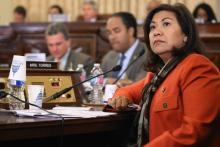 Torres is the only Central American serving in Congress. She is co-Chair of the Central Americans Caucus.(Chip Somodevilla / Getty Images)