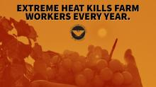 Photo: United Farm Workers Twitter