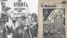 Fundado por César Chávez, al tiempo empezó a haber discrepancias entre el personal y el propio líder agrícola. Photo: Voice of America.