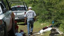 Forensic Medical Service staff investigate a clandestine grave found in the outskirts of Iguala city. Photo: EFE
