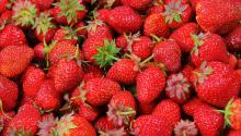 Las fresasson las frutas que más alto porcentaje de pesticidas contienen. Foto:Pixabay