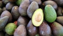 Avocados are trendy, and eateries like Avocadería, in Brooklyn, NY, are becoming a success.