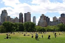 People fill Sheep Meadow in Central Park on May 31, 2021 in New York City. Photo:Cindy Ord/Getty Images