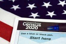 United States 2020 census form - stock photo