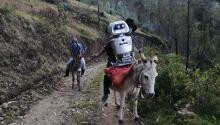 Walter y su escudera metálicase aventuran porrutas peligrosas, a más de 3.000 metros de altitud, para traer esperanza.Photo: EFE
