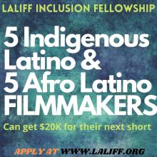 Laliff Inclusion Fellowship Poster.