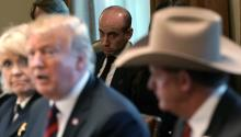 WASHINGTON, DC - JANUARY 11: Senior Advisor to the President, Stephen Miller (C) looks on as U.S. President Donald Trump hosts a round-table discussion on border security and safe communities with State, local, and community leaders in the Cabinet Room of the White House on January 11, 2019, in Washington, DC. (Photo by Alex Wong/Getty Images)