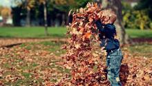 El otoño es una buena época para disfrutar de la naturaleza. Foto:Scott Webb