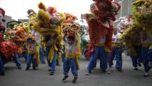 Lion dancers perform during the Chinese New Year celebrations in Lima, Peru. Photo: Martin Mejia/Associated Press