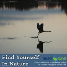 River Days- Find Yourself In Nature
