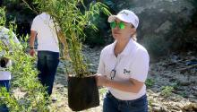 Patricia Caicedo Omar has been the leader of important changes in Santa Marta to combat the effects on the environment. This historical city is the first in Colombia that decided to combat the use of single-use plastics. It was founded in 1525 and Simón Bolívar died there on December 17, 1830. Dadsa